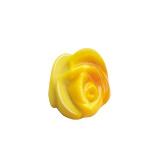 Rosa gialla gianduia scuro fondente